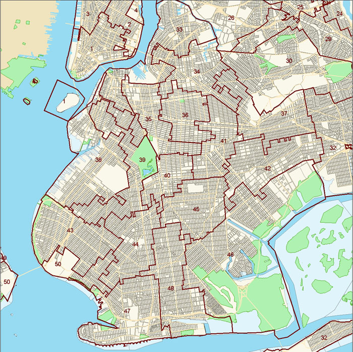 Brooklyn City Council District Map