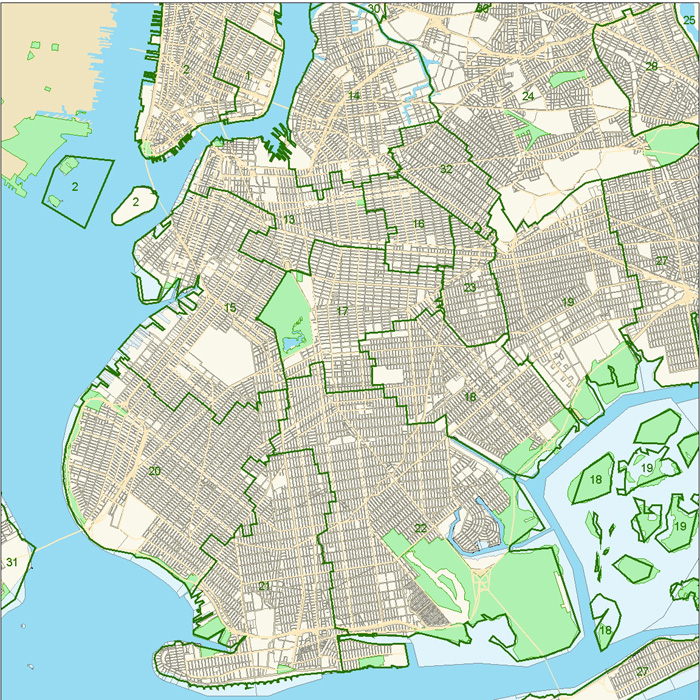 Brooklyn Schoold District Map