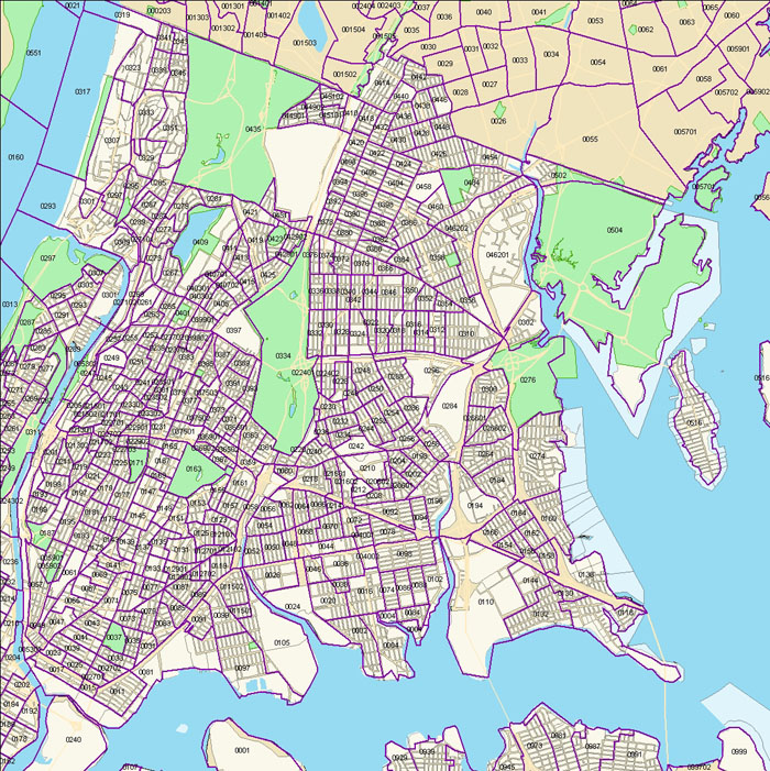 Bronx Census Tract Map