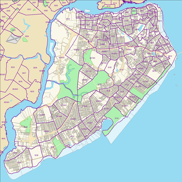 Staten Island Census Tract Map